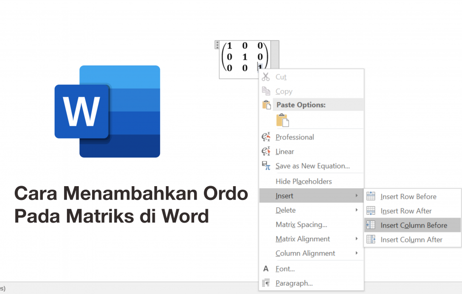 Cara Menambahkan Ordo Pada Matriks di Word